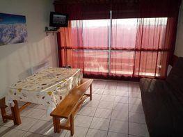 Comedor - Apartamento en alquiler de temporada en Saint-Lary-Soulan - 259045145