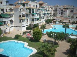 Piscina - Apartamento en alquiler de temporada en Roquetas de Mar - 389472010