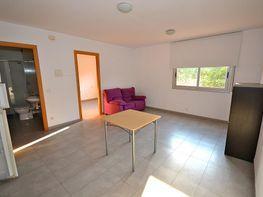 Piso en alquiler en calle Hort del Nin, Molí d En Rovira en Vilafranca del Pened