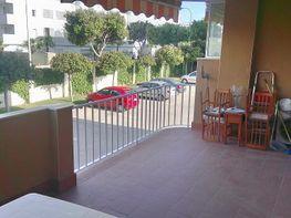 Piso en alquiler en calle Myramar, Miramar en Fuengirola