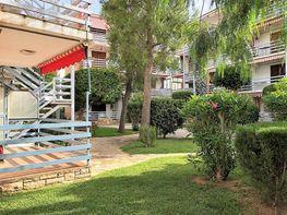 Piso en alquiler en calle Olivarda, Vendrell, El