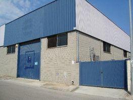 Nau industrial en venda Santa Oliva - 260126715