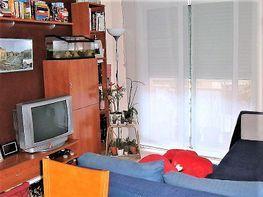 Pis en venda carrer Circunvalacion, Santa Rosa a Santa Coloma de Gramanet - 423096997