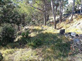 Terreno en venta en El serrat en Castellnou de Bages - 326170251