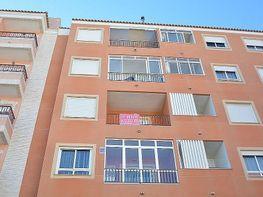 Piso en venta en calle Lirios Los a, Almoradí - 386841093
