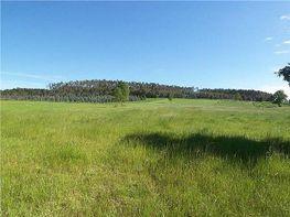 Land for sale in Boimorto - 393501127