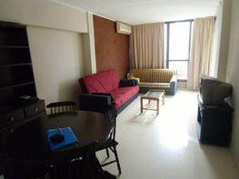 Foto - Apartamento en alquiler en calle Dinamarca, Benidorm - 196290817