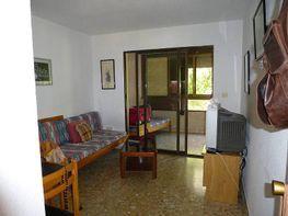 Foto - Piso en alquiler en calle Ibiza, Rincon de Loix en Benidorm - 342596085