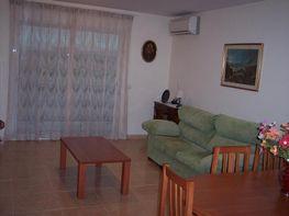 Wohnung in verkauf in calle Avenida de Castelló, Vinaròs - 293053632