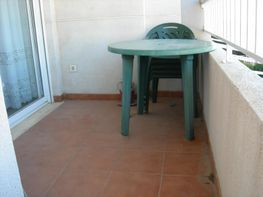 Apartment in miete in calle Jose Segrelles, Raco de Mar-Playa de Canet in Canet d´En Berenguer - 114844154