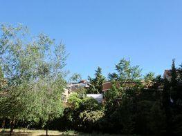 Piso en venta en Campo Grande-Arco Ladrillo en Valladolid - 358776852