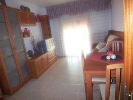 Comedor - Piso en venta en pasaje Pirineo, Cordelles en Cerdanyola del Vallès - 45437446
