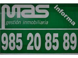 Piso en alquiler en Vallobin-La Florida-Las Campas en Oviedo - 355824868