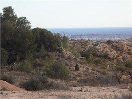 Terreny en venda San Vicente del Raspeig/Sant Vicent del Raspeig - 126433860