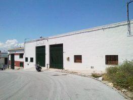 Fachada - Nave industrial en venta en calle Tabor, Polígonos-Recinto Ferial Cortijo de Torres en Málaga - 46348120
