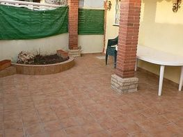 Terraza - Piso en venta en calle Diagonal, Babilonia en Torredembarra - 332685520