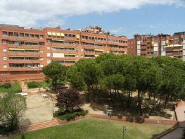 Piso en alquiler en calle Sant Marti de L Erm, Sant Joan Despí