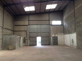 Nave industrial en alquiler en barrio Can Sunyer, Zona Centre en Sant Andreu de la Barca - 407263733