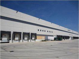 Fabrikationshalle in miete in calle Parque Logístico Bràfim, Bràfim - 183554733