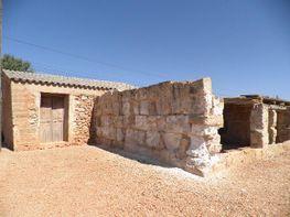 Rural property for sale in carretera Colonia de San Jordi, Campos - 93303905