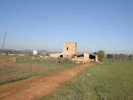 Rural house for sale in carretera Felanitx, Campos - 132232524