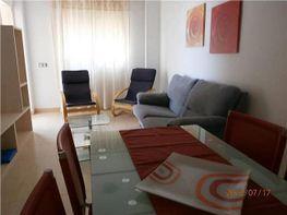 Apartamento en alquiler en Las Salinas en Roquetas de Mar - 364872146