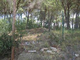 Terreny en venda carrer Can Costa, Sant Vicenç dels Horts - 255771035