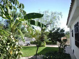 Haus in verkauf in calle , Torres Torres - 351825442