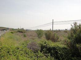 Terrain de location à calle , Lleida - 226003020