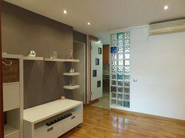 Piso en alquiler en calle Montseny, Collblanc en Hospitalet de Llobregat, L