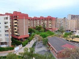 Foto - Piso en venta en calle Tarragona, San Blas - Santo Domingo en Alicante/Alacant - 355372393