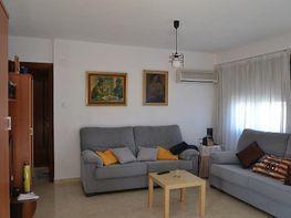 Piso en venta en calle Alcalde Lorenzo Carbonell, Babel en Alicante/Alacant - 339428354