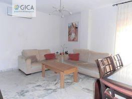 Foto - Piso en venta en Centro en Jerez de la Frontera - 247331526