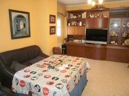 Wohnung in verkauf in calle Sierra Magina, Pino Montano in Sevilla - 240640414