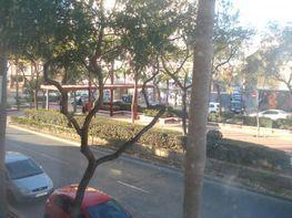 Vistas - Piso en alquiler en calle Llano Amarillo, Colonia Los Angeles en Almería - 58874462
