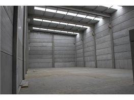Nave industrial en alquiler en Porriño (O) - 404992358