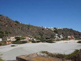 Terreno en venta en calle Los Olivos, Toscones, Los - 156409484