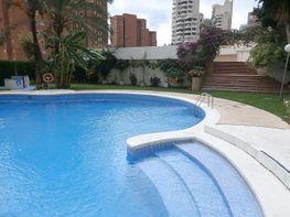 Foto - Apartamento en venta en Levante en Benidorm - 337547477