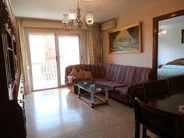 Foto - Piso en venta en Zona centro en Benidorm - 370541600