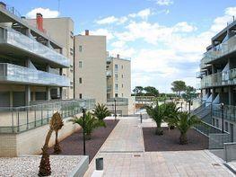 Apartment in verkauf in Alcossebre - 141671946