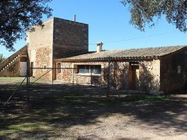 Rural property for sale in calle Campos, Campos - 167324764