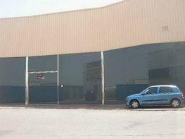 Nau industrial en venda calle Altillo, Norte a Jerez de la Frontera - 284650126