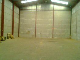 Gewerbehalle in miete in calle Els Ports, Alaquàs - 120296197