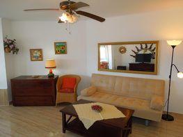 Comedor - Apartamento en alquiler en calle América, Torrox-Costa en Torrox - 325803721