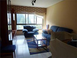 Apartamento en alquiler en calle Tierno Galvan, Culleredo