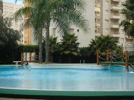 Apartamento en alquiler de temporada en calle Illes Canaries, Playa de Gandia en Gandia - 243686881