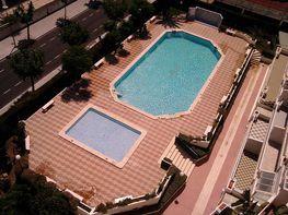 Apartamento en alquiler de temporada en calle Formentera, Playa de Gandia en Gandia - 244231853