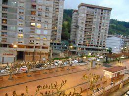 Vistas - Piso en venta en Eibar - 321319655