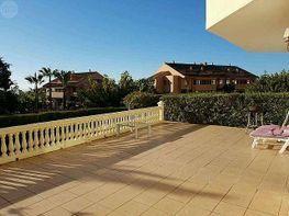 Azotea - Piso en alquiler en urbanización Bahia de Marbella, Los Monteros-Bahía de Marbella en Marbella - 384973726