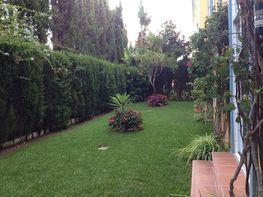 Piso en alquiler en urbanización Bahia de Marbella, Los Monteros-Bahía de Marbella en Marbella - 225282569